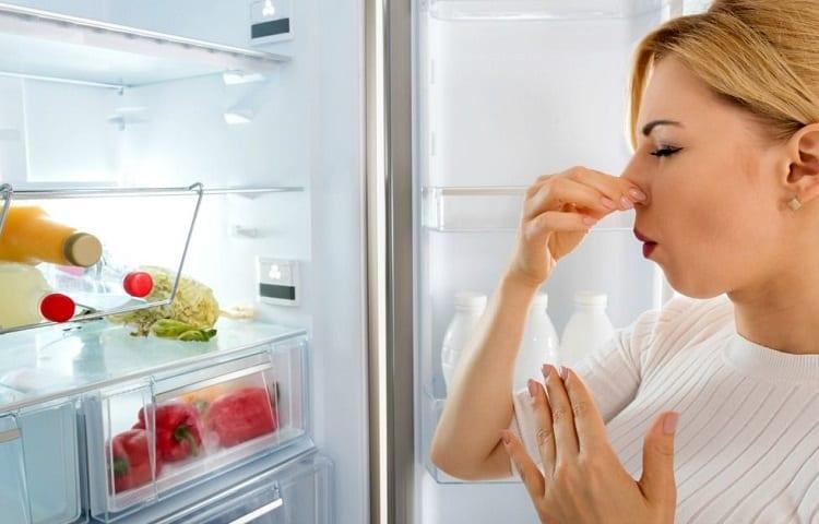 rotten smell in refrigerator