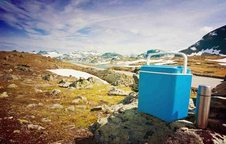 blue cooler with vacuum insulated bottle