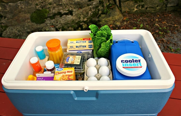 stored food in cooler