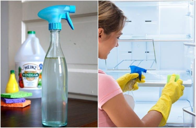 distilled vinegar for sanitizing fridge