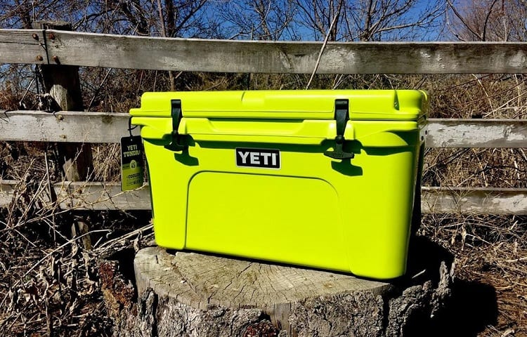 yeti cooler on the stump